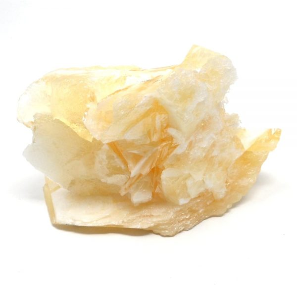 Angel Wing Calcite All Raw Crystals
