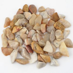 "Coral, Agatized, ""A"", tumbled, 4oz All Tumbled Stones agatized coral"