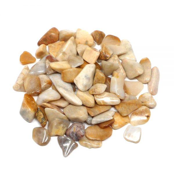 Coral, Agatized, tumbled, 4oz All Tumbled Stones agatized coral