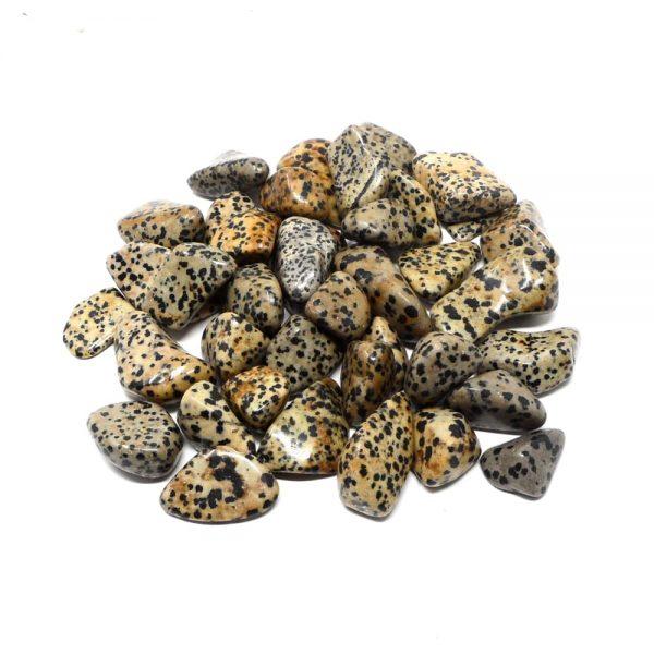 Dalmatian Jasper lg tumbled 16oz All Tumbled Stones bulk crystals