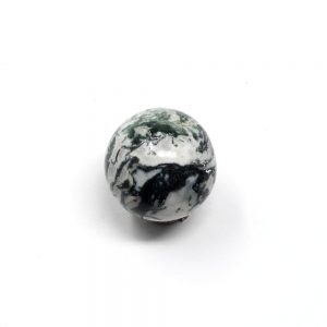Tree Agate Sphere 40mm All Polished Crystals agate
