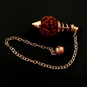 Rudraksha Pendulum All Specialty Items pendulum