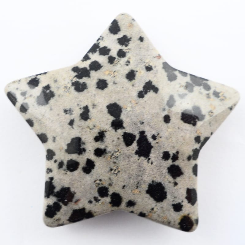 Dalmatian Jasper Star All Specialty Items dalmatian jasper