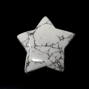 Howlite Star All Specialty Items crystal star