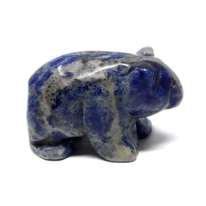 Sodalite Bear New arrivals bear