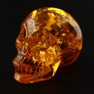 Amber Skull All Polished Crystals amber