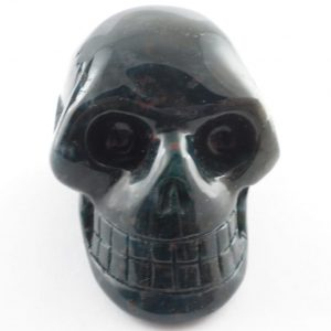 Bloodstone Skull Polished Crystals bloodstone