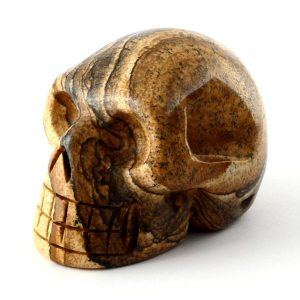 Picture Jasper Skull All Polished Crystals