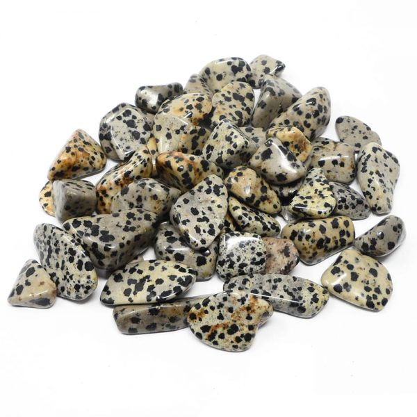 Jasper, Dalmatian, tumbled, 8oz All Tumbled Stones bulk crystals