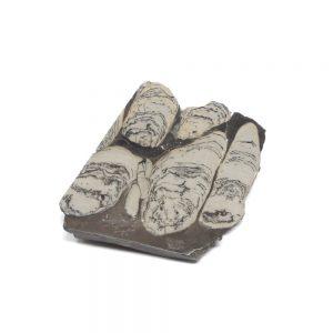 Stramatolite Slab All Gallet Items crystal slab