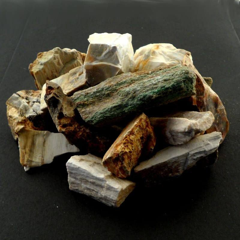 Petrified Wood, 16oz All Polished Crystals petrified wood