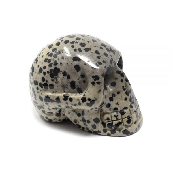 Dalmatian Jasper Skull All Polished Crystals crystal skull