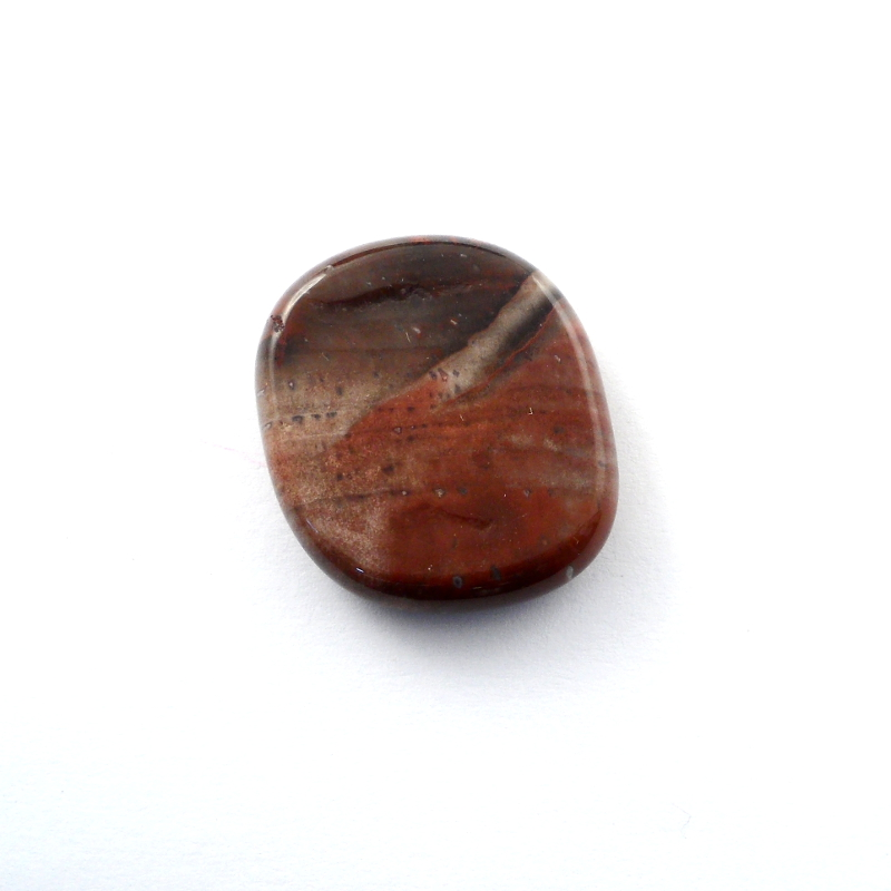 Petrified Wood Pocket Stone All Gallet Items petrified wood