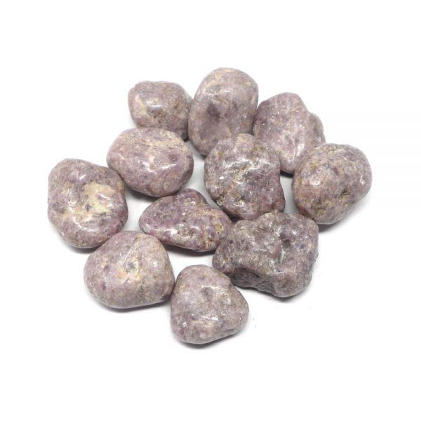 Tumbled Lepidolite lg 8oz All Tumbled Stones bulk lepidolite