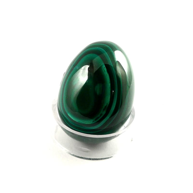 Malachite Egg All Polished Crystals egg