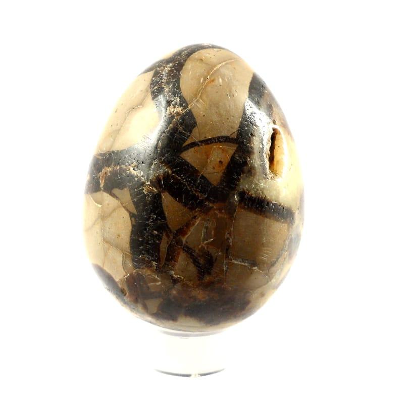 Septarian Egg All Polished Crystals septarian egg