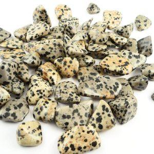 Dalmatian Stone, tumbled, 8oz All Tumbled Stones dalmatian stone