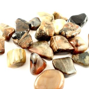 Petrified Wood Lg, tumbled, 8oz All Tumbled Stones petrified wood