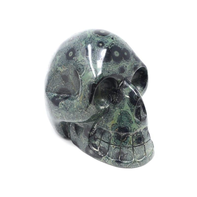 Jasper, Kambaba Skull XL All Polished Crystals kambaba jasper