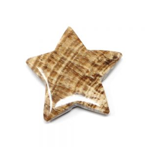 Aragonite Star All Specialty Items aragonite