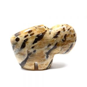 Graphic Feldspar Buffalo All Specialty Items bison
