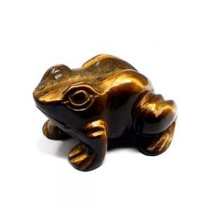 Tiger Eye Frog All Specialty Items animal