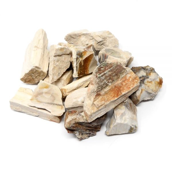 Petrified Wood 16oz All Raw Crystals bulk fossilized wood
