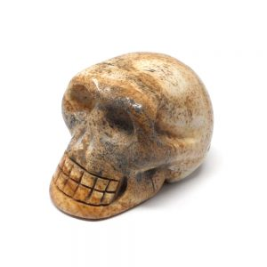 Picture Jasper Skull All Polished Crystals crystal skull