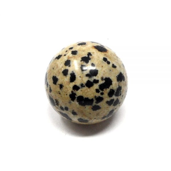 Dalmatian Jasper Sphere 23mm All Polished Crystals dalmatian jasper healing properties