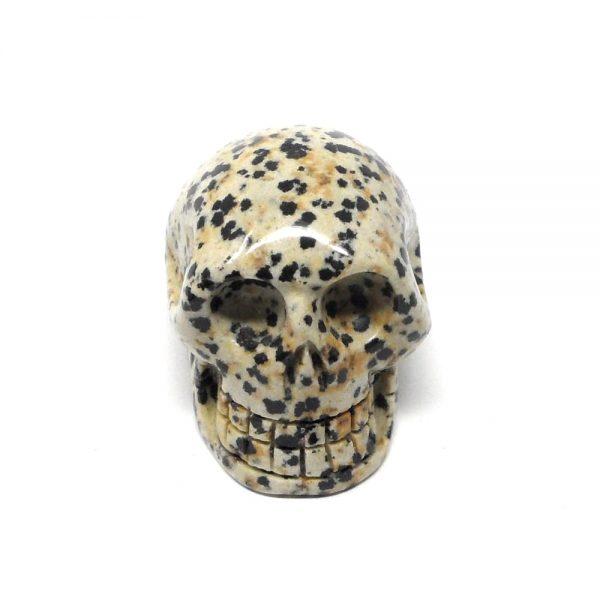 Dalmatian Jasper Skull All Polished Crystals crystal skull