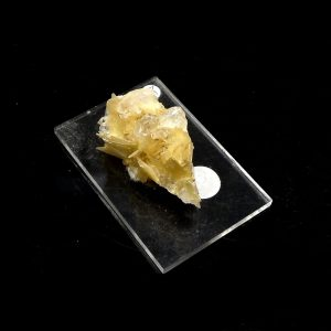 Star Muscovite Crystal All Raw Crystals muscovite