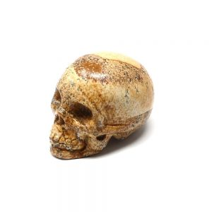 Picture Jasper Skull All Polished Crystals crystal skull